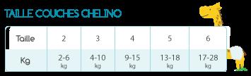 BB-GT-CHELINO-FR_5.png