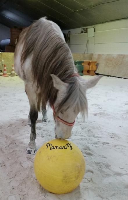 semaine-mamanmi-blog-fevrier2018-maman-viedemaman-quotidien 6
